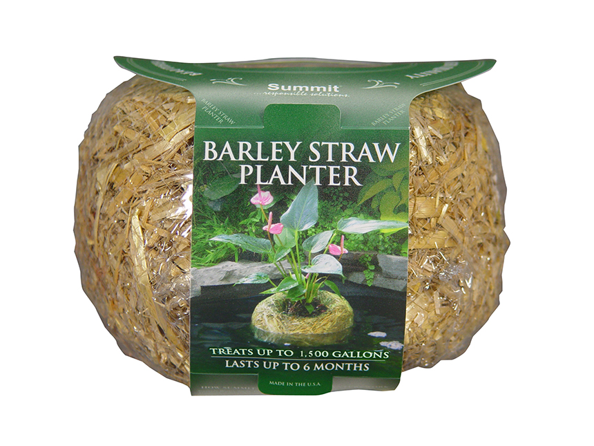 Barley Straw Planter Large, 4/case