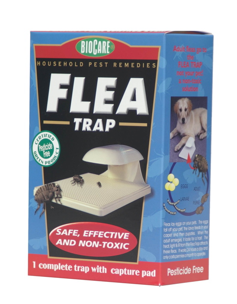 BioCare Flea Trap