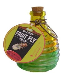 Glass Fruit Fly Trap w/ lure, 12/case
