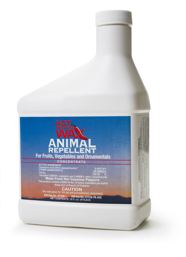 Hot Pepper Wax, ANIMAL, 16 oz. conc.