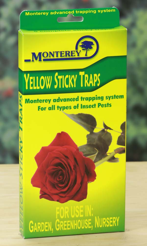Monterey Yellow Sticky Traps, 5/pkg, 12/case