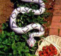 Natural Enemy Inflatable Scarecrow Snake