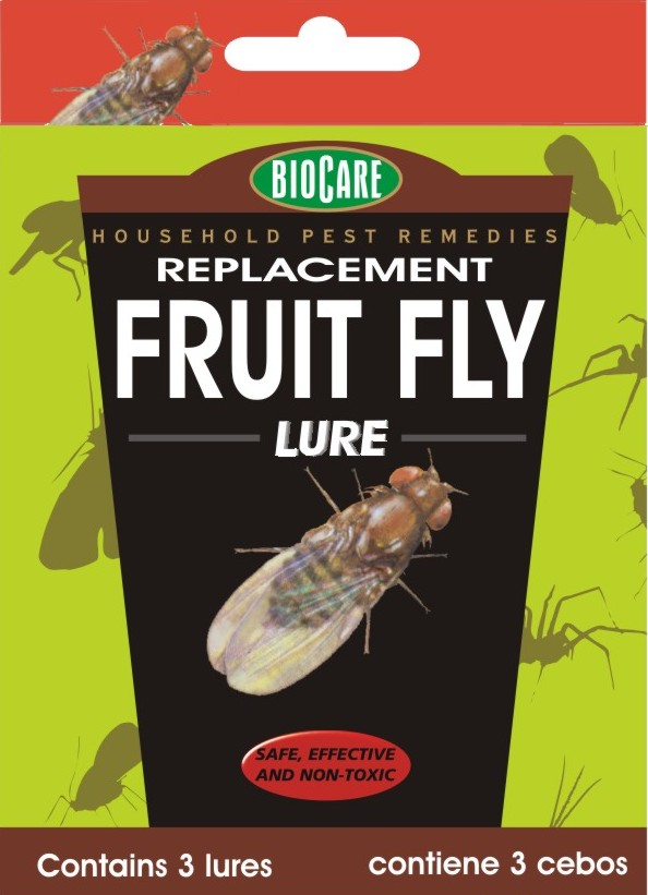 Replacement Fruit Fly Lure, 3/pkg