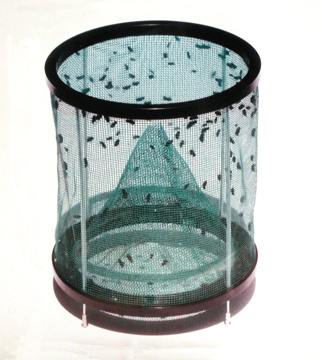 Rid-Max Fly Trap, 12/case
