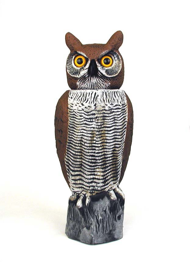 Rotating-Head Lifesize Great Horned Owl