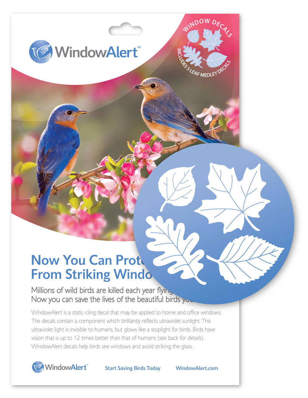 WindowAlert,  Leaf Medely Decals, 4/pk