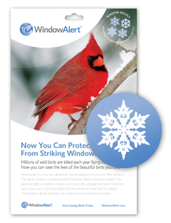 WindowAlert,  Snowflake Decal, 4/pk