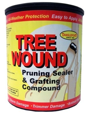 Tanglefoot Tree Wound & Grafting Compond, 1 gal, 4/case